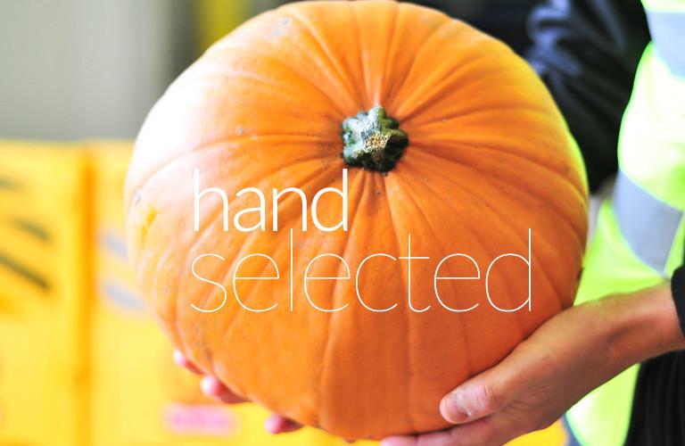 Hand Select Mob