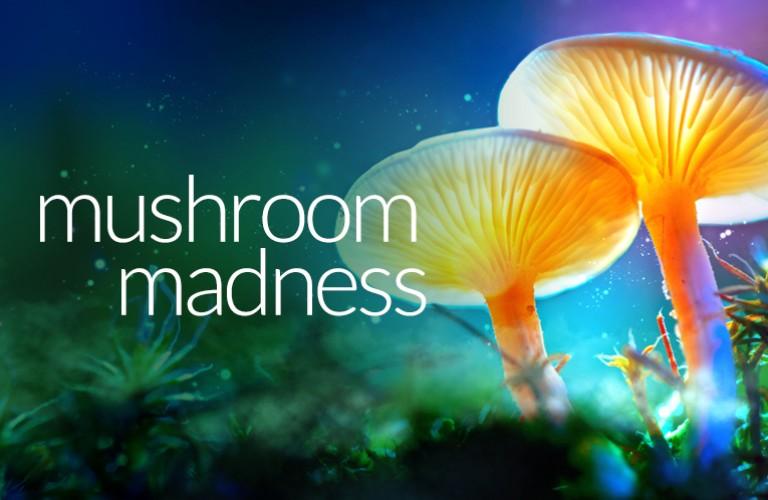 Mushroom17 Mob