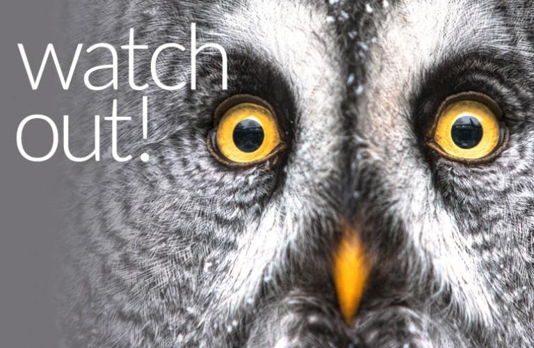 Watch9M