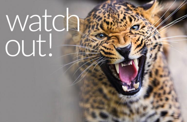 Watchout18M