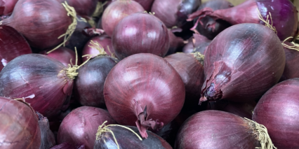 Baby Red Onion1
