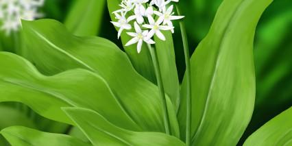 Shutterstock 188766572