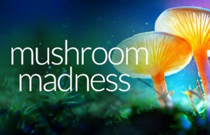 Mushroom17 Grid