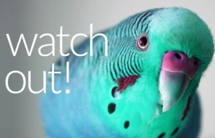 Watchg