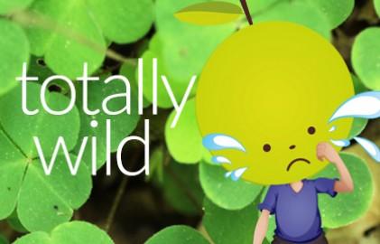 Wild11G
