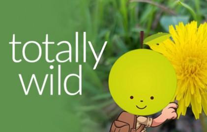 Wild 10 Refresh