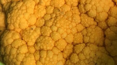 Orange Cauli
